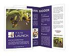 0000082427 Brochure Template