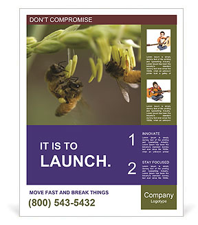 0000082427 Poster Templates