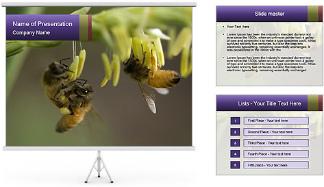 0000082427 PowerPoint Template
