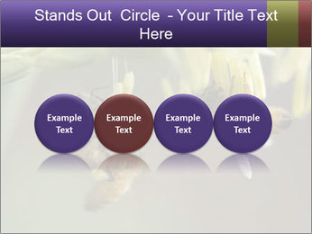 0000082427 PowerPoint Templates - Slide 76