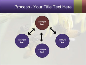 0000082427 PowerPoint Templates - Slide 91
