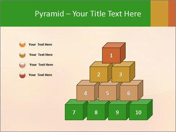 0000082433 PowerPoint Templates - Slide 31