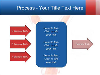 0000082436 PowerPoint Template - Slide 85