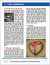 0000082436 Word Template - Page 3