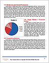 0000082436 Word Template - Page 7