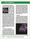 0000082444 Word Template - Page 3