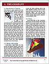 0000082451 Word Template - Page 3