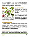0000082453 Word Templates - Page 4
