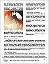 0000082455 Word Template - Page 4
