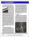 0000082464 Word Template - Page 3