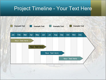 0000082470 PowerPoint Template - Slide 25