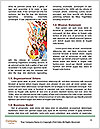 0000082472 Word Template - Page 4