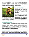 0000082474 Word Template - Page 4