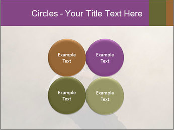 0000082475 PowerPoint Templates - Slide 38