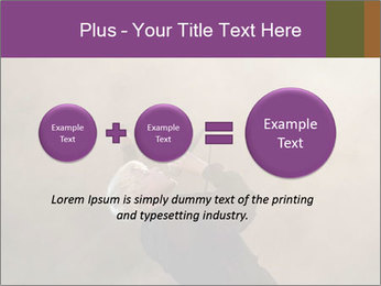 0000082475 PowerPoint Template - Slide 75