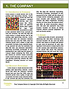 0000082480 Word Template - Page 3