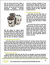0000082480 Word Template - Page 4
