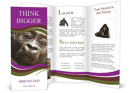 0000082482 Brochure Template