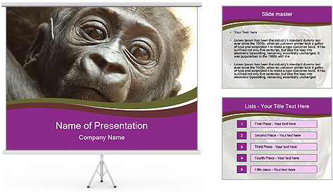 0000082482 PowerPoint Template
