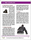 0000082482 Word Template - Page 3