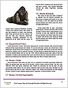 0000082482 Word Template - Page 4