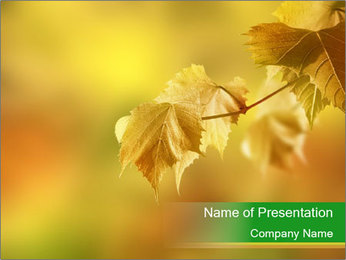 0000082486 PowerPoint Template - Slide 1