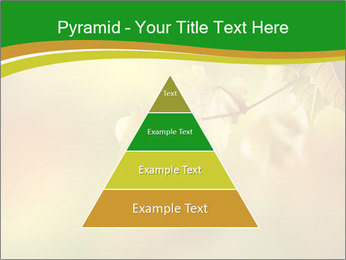 0000082486 PowerPoint Template - Slide 30