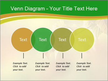 0000082486 PowerPoint Templates - Slide 32
