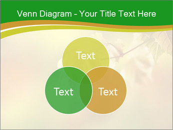 0000082486 PowerPoint Template - Slide 33