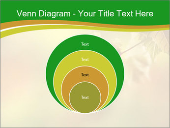0000082486 PowerPoint Template - Slide 34
