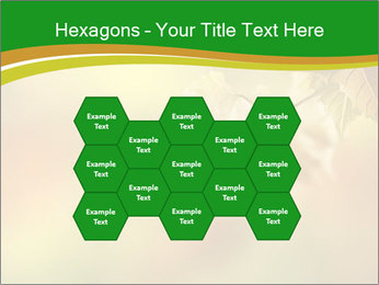 0000082486 PowerPoint Templates - Slide 44