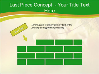0000082486 PowerPoint Template - Slide 46