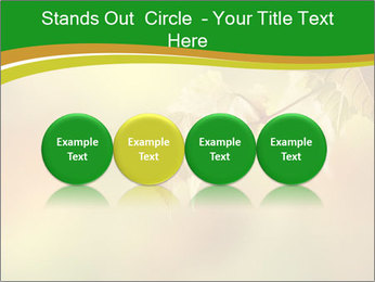 0000082486 PowerPoint Template - Slide 76