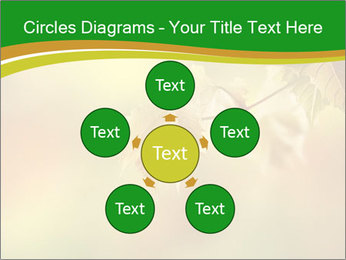 0000082486 PowerPoint Templates - Slide 78