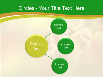 0000082486 PowerPoint Template - Slide 79