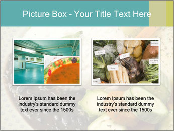 0000082487 PowerPoint Template - Slide 18