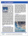 0000082489 Word Template - Page 3