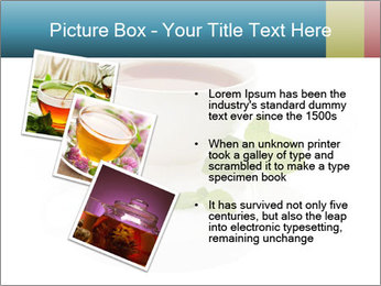 0000082492 PowerPoint Template - Slide 17