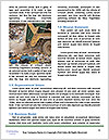 0000082500 Word Templates - Page 4