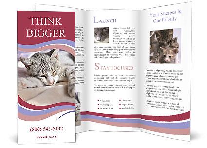 0000082502 Brochure Templates