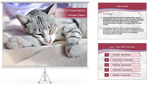 0000082502 PowerPoint Template