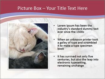 0000082502 PowerPoint Template - Slide 13