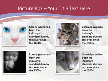 0000082502 PowerPoint Template - Slide 14