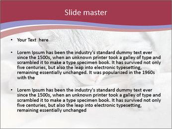 0000082502 PowerPoint Template - Slide 2