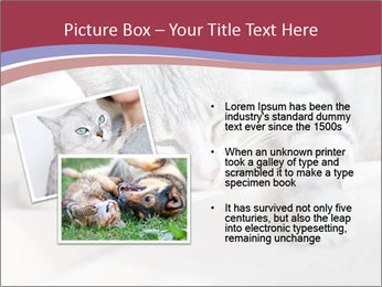 0000082502 PowerPoint Template - Slide 20