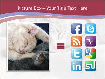 0000082502 PowerPoint Template - Slide 21