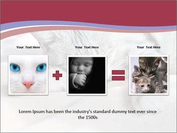 0000082502 PowerPoint Template - Slide 22