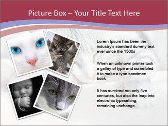 0000082502 PowerPoint Template - Slide 23