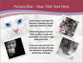 0000082502 PowerPoint Template - Slide 24