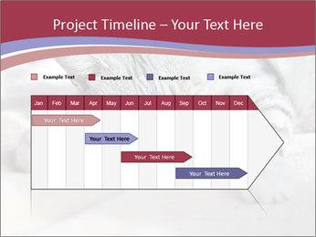 0000082502 PowerPoint Template - Slide 25